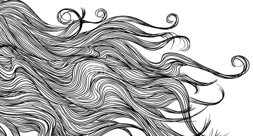Dessin Monochrome De Long De Cheveux De Fille Ensemble De